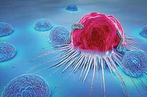 نتایج 'نویدبخش' یک داروی ضد سرطان